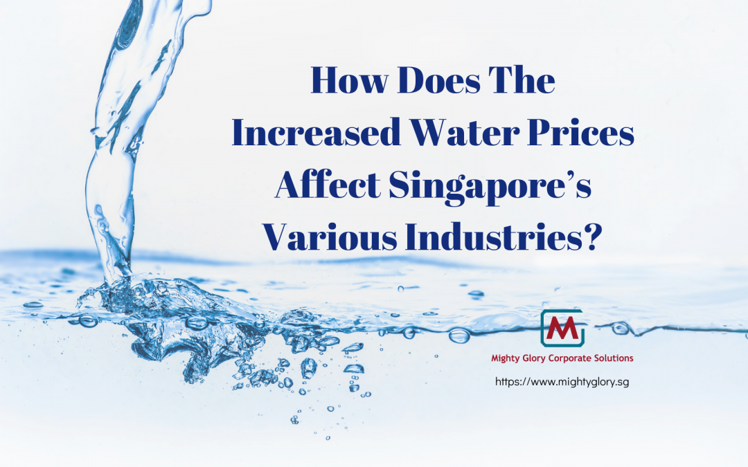 How Does The Increased Water Prices Affect Singapore's Various Industries?