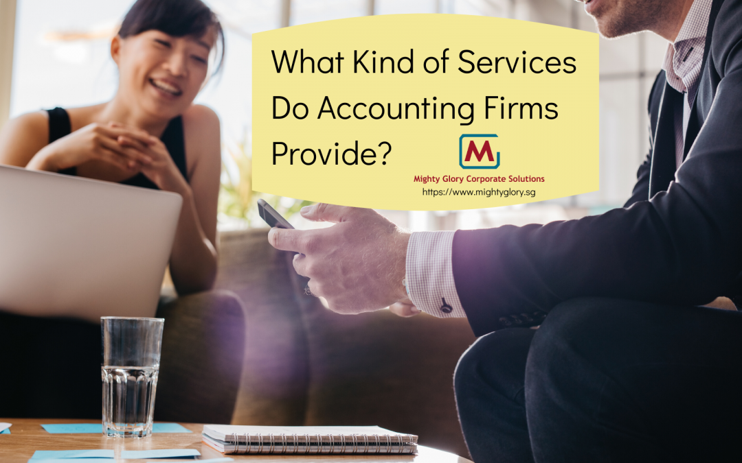 What Kind of Services Do Accounting Firms Provide?