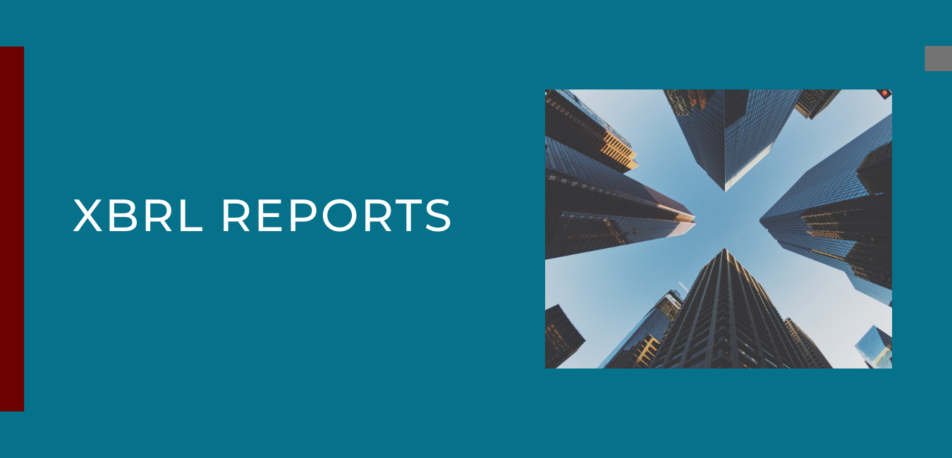 XBRL Reports
